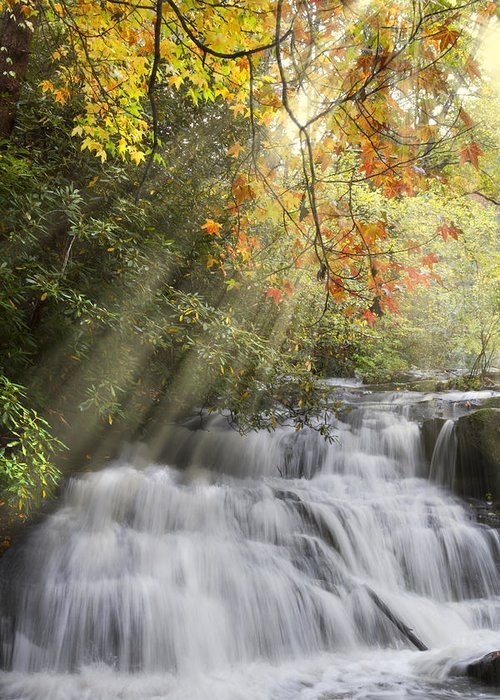 Appalachia Greeting Card featuring the photograph Misty Falls At Coker Creek by Debra and Dave Vanderlaan