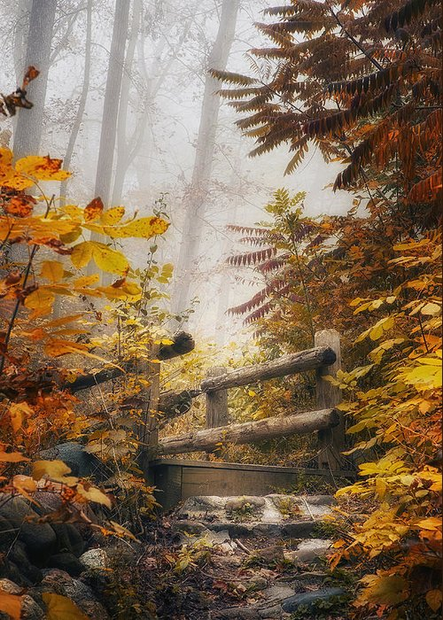 Bridge Greeting Card featuring the photograph Misty Footbridge by Scott Norris