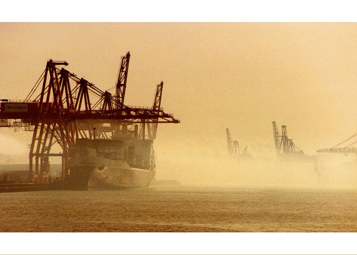 Framed Prints And Note Cards Of The Port Of Seattle�s Seaport Greeting Card featuring the photograph Misty Seattle Waterfront by Jack Pumphrey