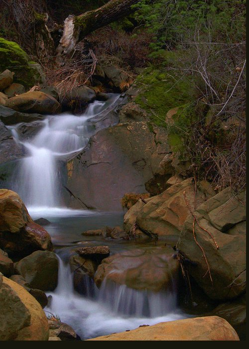 Mix Canyon Greeting Card featuring the photograph Mix Canyon Creek by Bill Gallagher