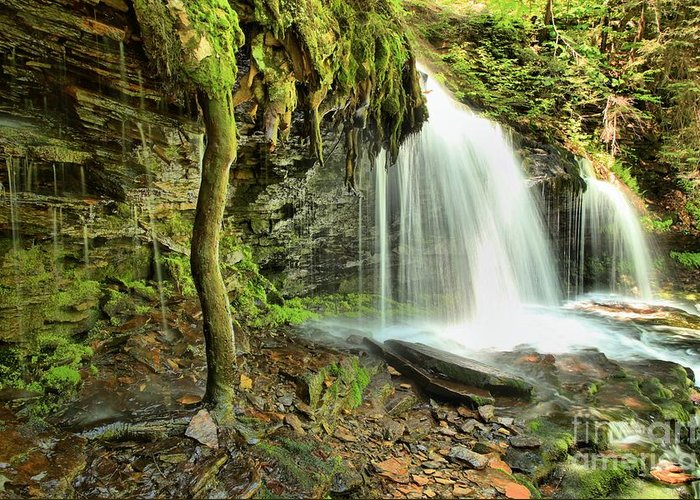 Mohawk Falls Greeting Card featuring the photograph Mohawk Falls At Ricketts Glen by Adam Jewell
