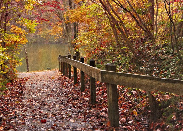 Appalachia Greeting Card featuring the photograph Monet's Trail by Debra and Dave Vanderlaan