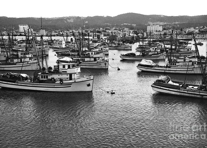 Fishing Greeting Card featuring the photograph Monterey Harbor Full Of Purse-seiner Fishing Boats California 1945 by California Views Mr Pat Hathaway Archives