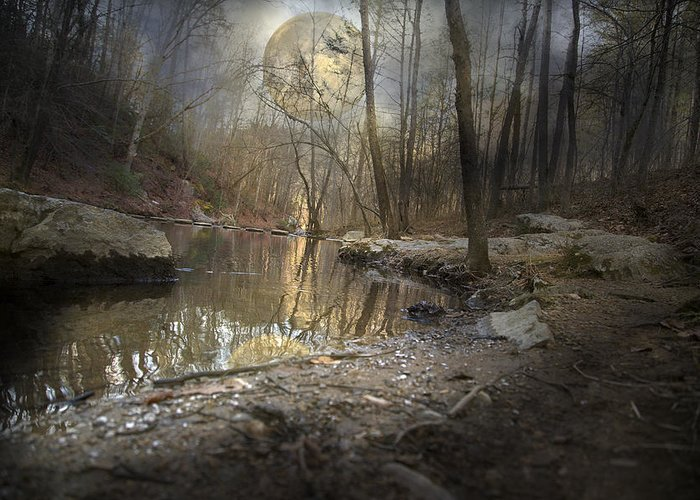 Full Greeting Card featuring the photograph Moon Camp by Betsy Knapp