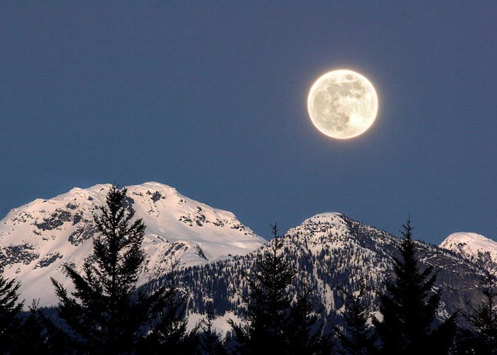 Full Moon Greeting Card featuring the photograph Moon Glow Whistler Canada by Pierre Leclerc Photography