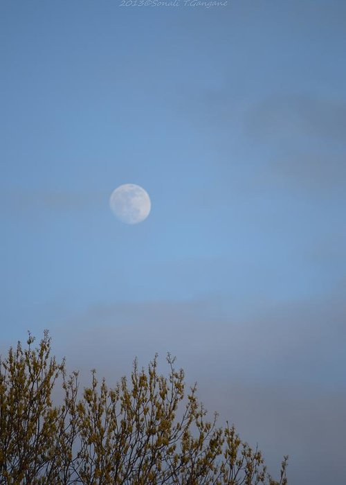 Glimpse Of Moon Greeting Card featuring the photograph Moon Lording Over Sky by Sonali Gangane