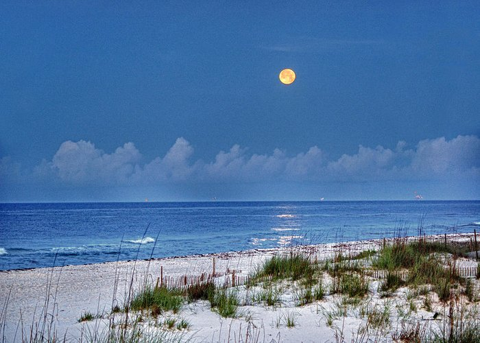 Alabama Photographer Greeting Card featuring the digital art Moon Over Beach by Michael Thomas