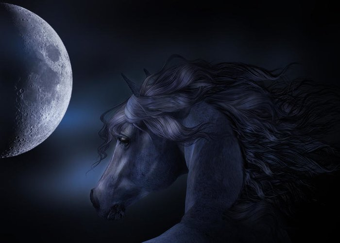 Horse Greeting Card featuring the digital art 'moon Struck' by Sylvia De Klerk