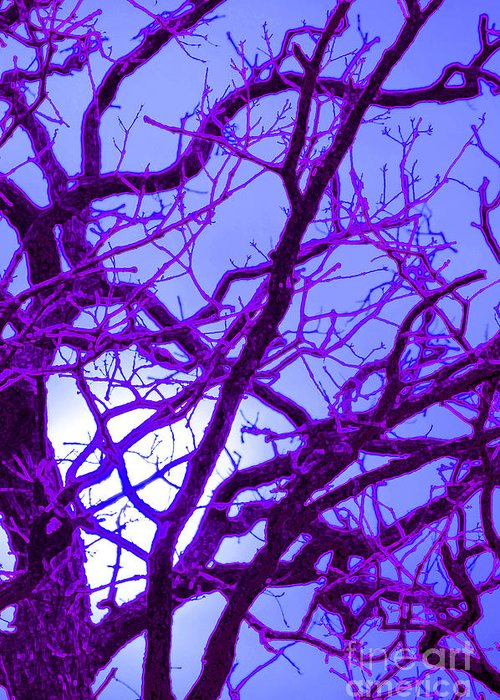 First Star Art Greeting Card featuring the photograph Moon Tree Purple by First Star Art
