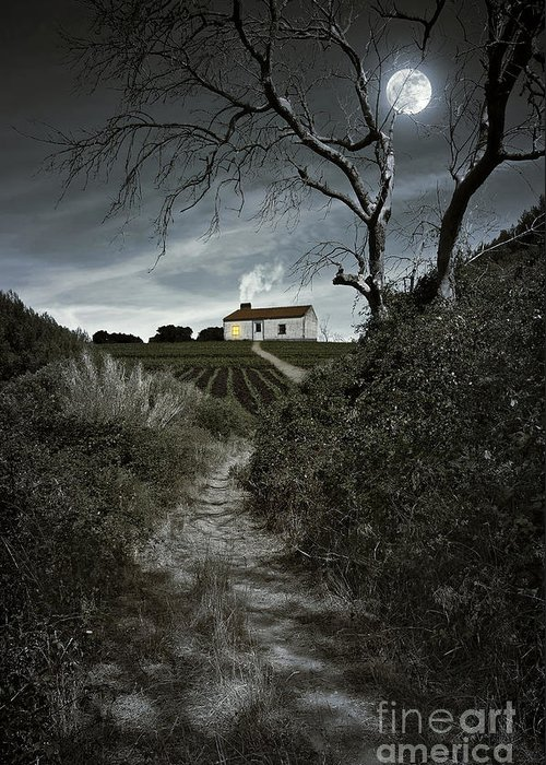Atmosphere Greeting Card featuring the photograph Moonlight Farm by Carlos Caetano