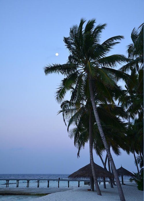 Beach Greeting Card featuring the photograph Moonrise In Maldives by Corinne Rhode