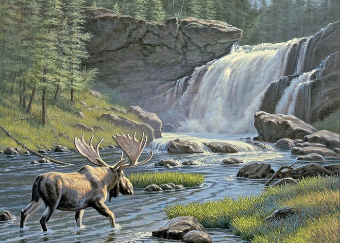 Wildlife Greeting Card featuring the painting Moose Falls by Paul Krapf