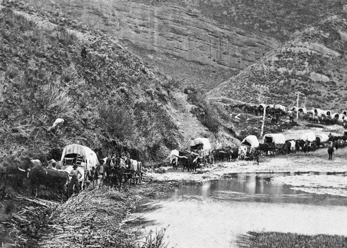 Mormon Greeting Card featuring the photograph Mormon Emigrant Conestoga Caravan 1879 - To Utah by Daniel Hagerman