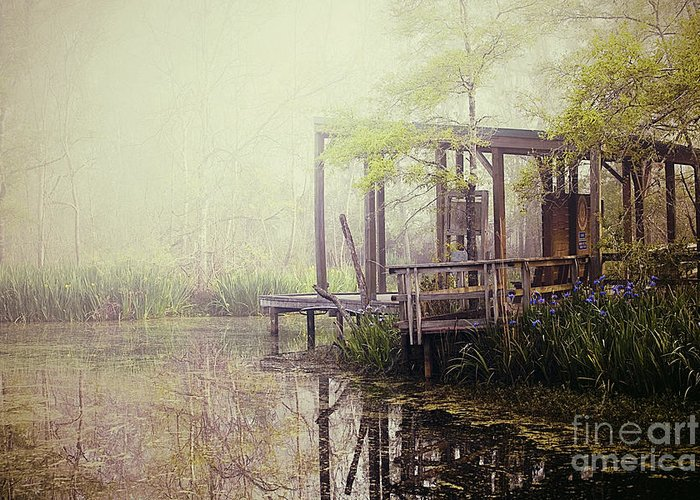Fog Greeting Card featuring the photograph Morning At The Nature Center by Katya Horner