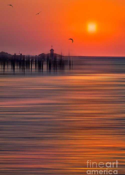 Sunrise Greeting Card featuring the photograph Morning Flight - A Tranquil Moments Landscape by Dan Carmichael