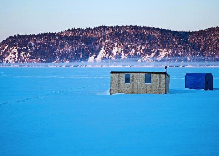 At A Chilly -24c And With Dead Calm Greeting Card featuring the photograph Morning Fog by Derek Grant
