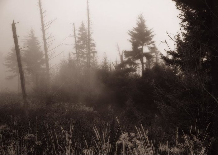 Morning Fog In The Smoky Mountains Greeting Card featuring the photograph Morning Fog In The Smoky Mountains by Dan Sproul