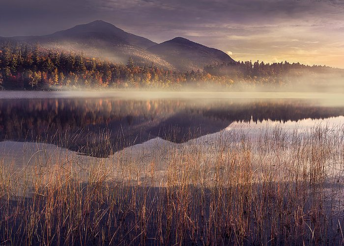 Morning Mist Greeting Cards