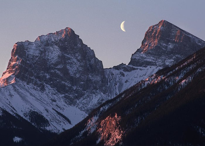 Canmore Greeting Card featuring the photograph Morning Light Canmore by Richard Berry