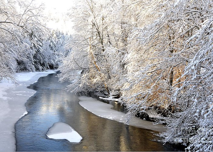 West Virginia Greeting Card featuring the photograph Morning Light Fresh Snowfall Gauley River by Thomas R Fletcher