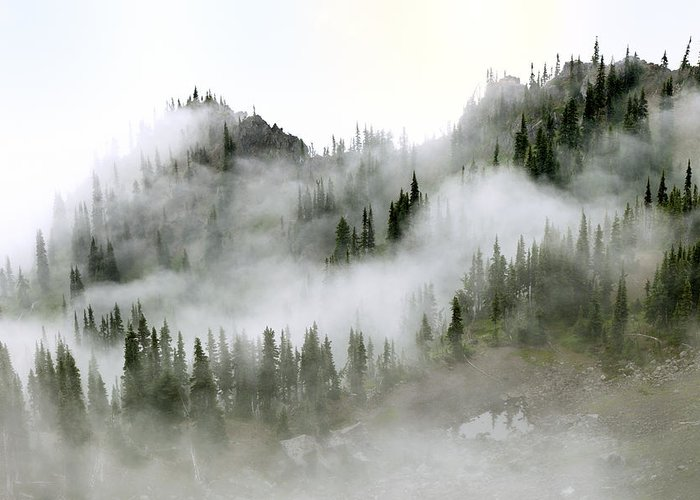 Morning Mist Images Greeting Cards