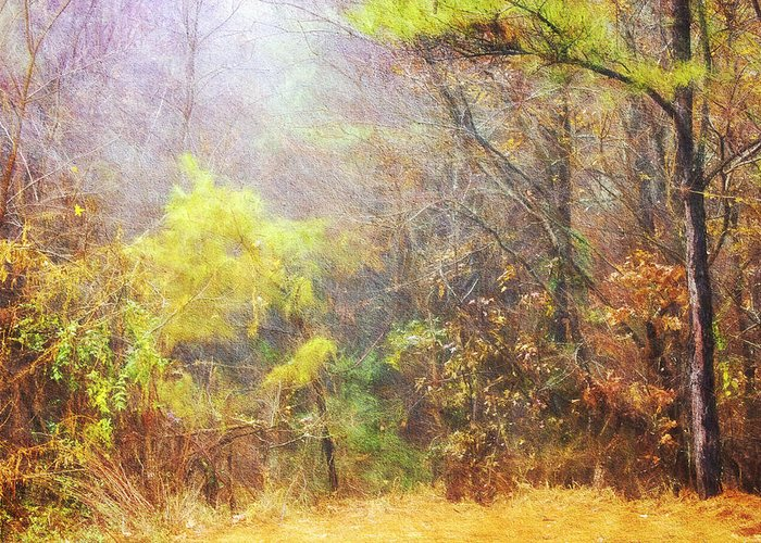 Misty Morning Greeting Card featuring the photograph Landscape - Trees - Morning Walk In The Woods by Barry Jones
