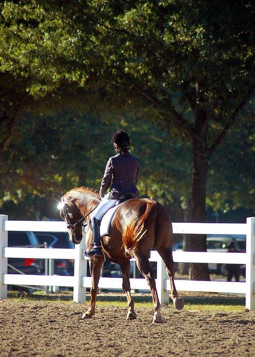 Hanovarian Dressage Horse Greeting Cards