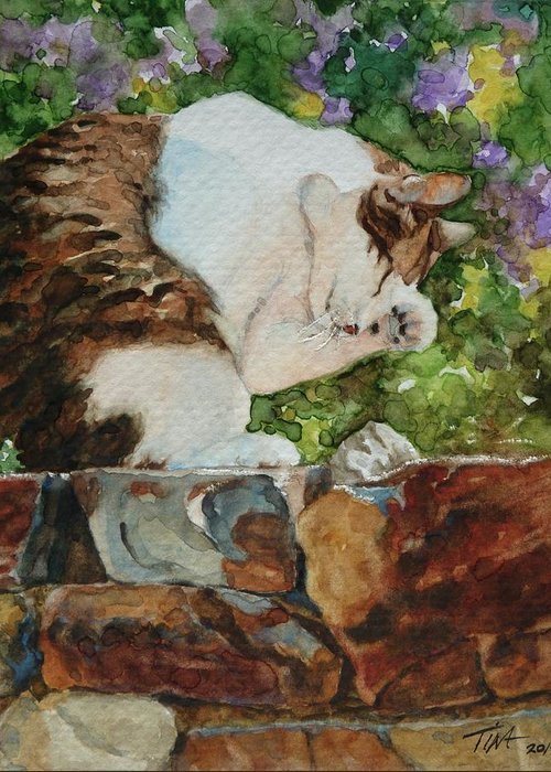 Cat Washing Face Greeting Card featuring the painting Morning Wash by Tina Welter
