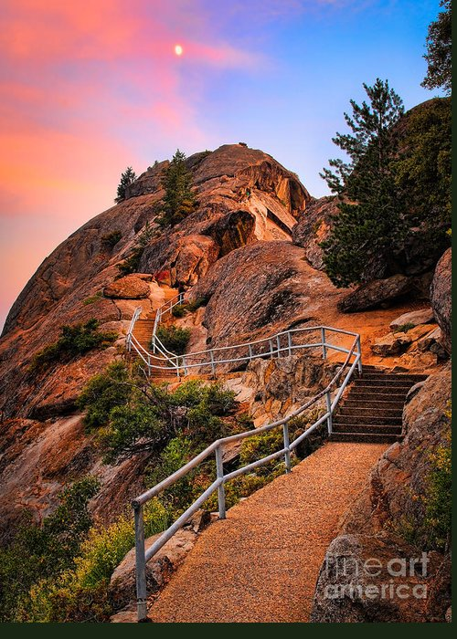 America Greeting Card featuring the photograph Moro Rock Path by Inge Johnsson