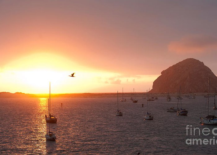 Morro Bay Ca Photographs Greeting Card featuring the photograph Morro Bay Rock At Sunset by Artist and Photographer Laura Wrede