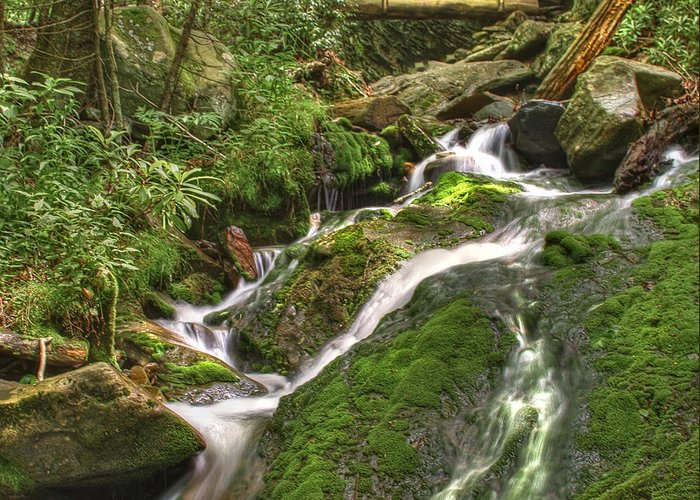 Appalachia Greeting Card featuring the photograph Mossy Creek by Debra and Dave Vanderlaan