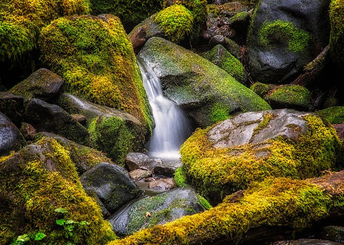Rocks Greeting Card featuring the photograph Mossy Waterfall by Kevin Clifford