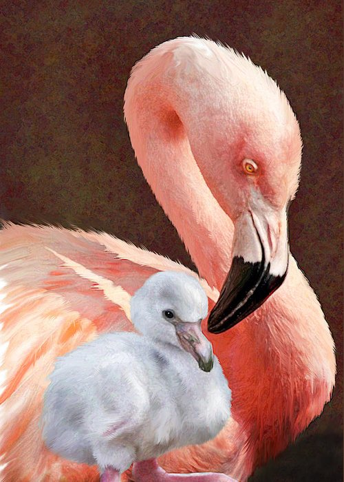 Flamingo Greeting Card featuring the digital art Mother And Baby Flamingo by Jane Schnetlage