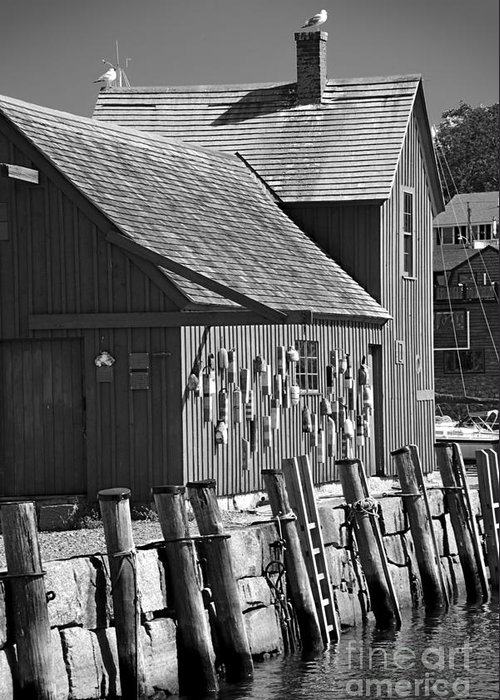 Rockport Greeting Card featuring the photograph Motif Number One Bw Black And White Rockport Lobster Shack Maritime by Jon Holiday