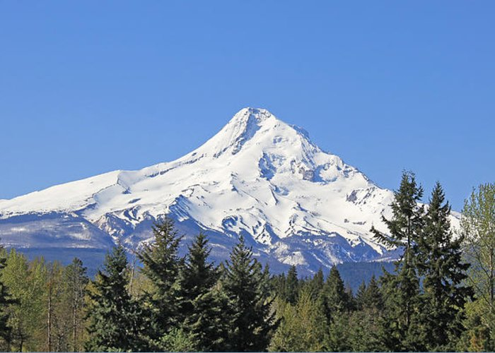 Mount Hood Greeting Card featuring the photograph Mount Hood Mountain Oregon by Jennie Marie Schell