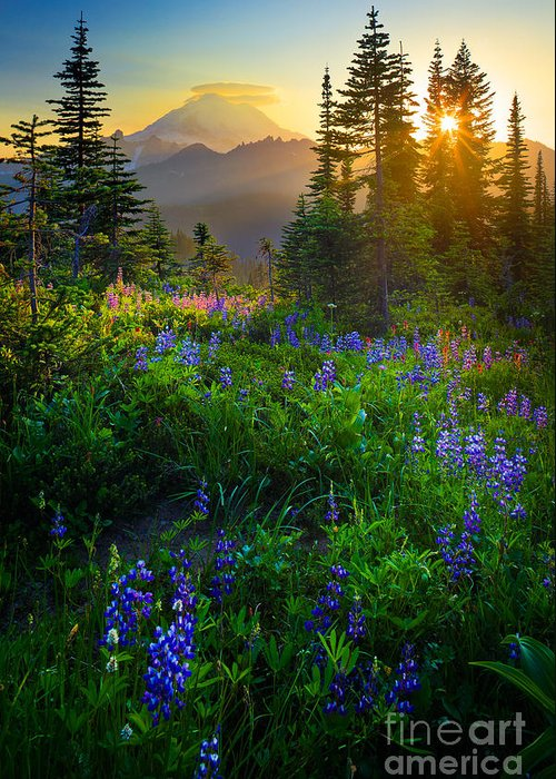 Cascade Mountains Greeting Cards