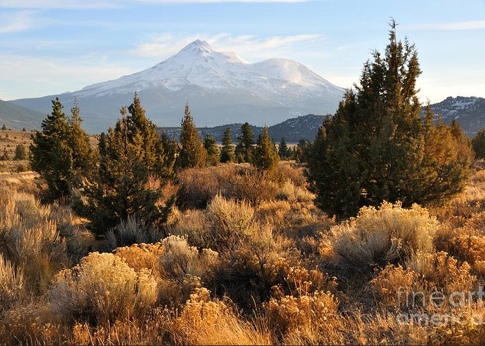 Mt Greeting Card featuring the photograph Mount Shasta In The Fall by Gary Whitton