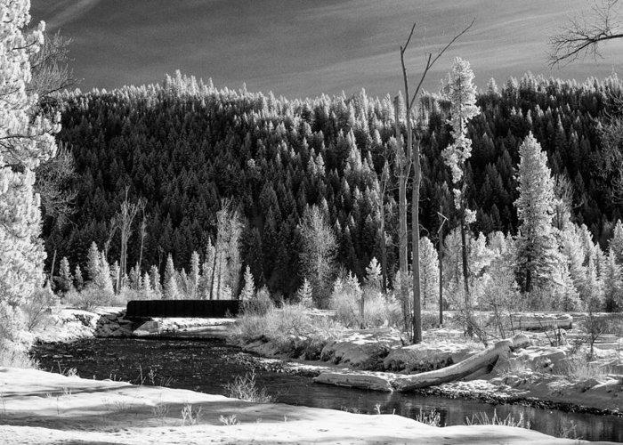 Montana Greeting Card featuring the photograph Mountain Bridge by Paul Bartoszek