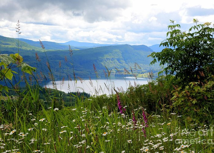 Lake Greeting Card featuring the photograph Mountain Lake Viewpoint by Carol Groenen