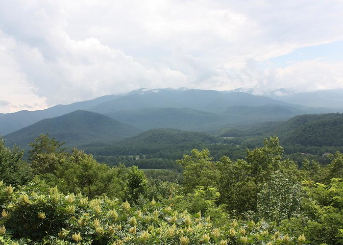Landscape Greeting Card featuring the photograph Mountain View by Charlene Harrelson