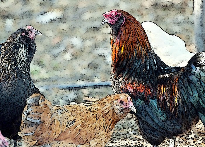 Rooster Art Greeting Card featuring the painting Mr. Rooster Talking With The Chickens by Artist and Photographer Laura Wrede