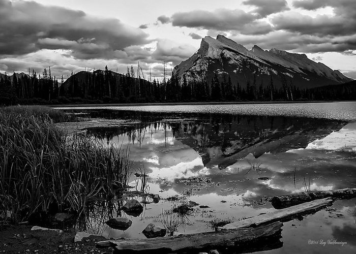 Banff Canvas Print Photograph Greeting Card featuring the photograph Mt. Rundle Reflection by Lucy VanSwearingen