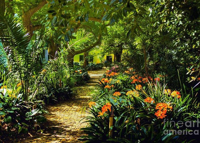 Muratie Gardens Simonsberg Area Sa Stellenbosch Greeting Card featuring the photograph Muratie Gardens by Rick Bragan