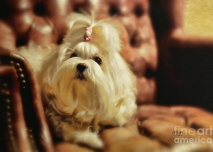 Dog Greeting Card featuring the photograph My Chair by Lois Bryan