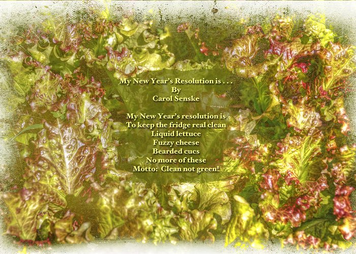 Poem Greeting Card featuring the photograph My New Year's Resolution Is . . . Poem And Image by Mother Nature