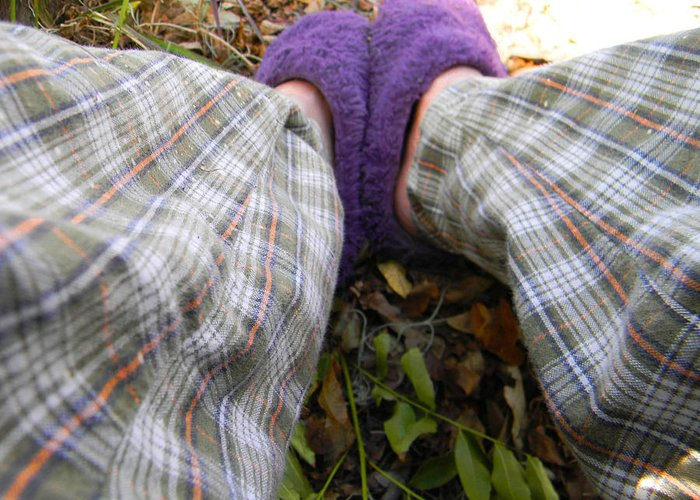 Slippers Greeting Card featuring the photograph My Purple Slippers by Christy Usilton