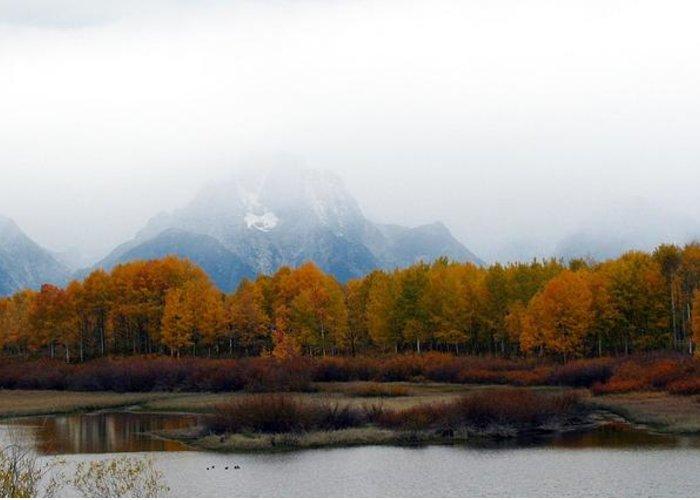Fall Greeting Card featuring the photograph Mystic Grand Teton by Carol Montoya