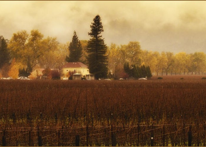 Wine Greeting Card featuring the photograph Napa In The Fall by Lee Jorgensen