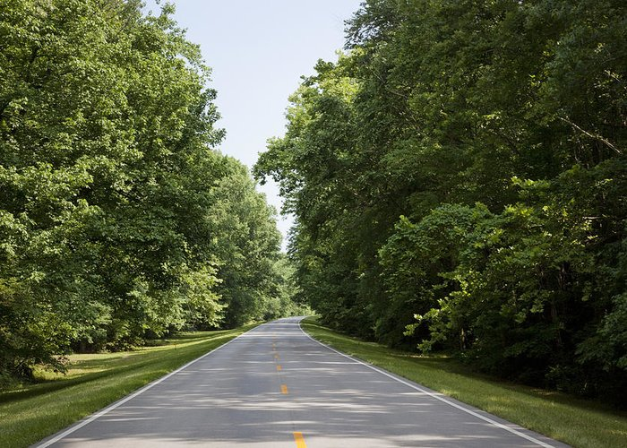 Natchez Greeting Card featuring the photograph Natchez Trace Parkway In Cobert County by Carol M Highsmith