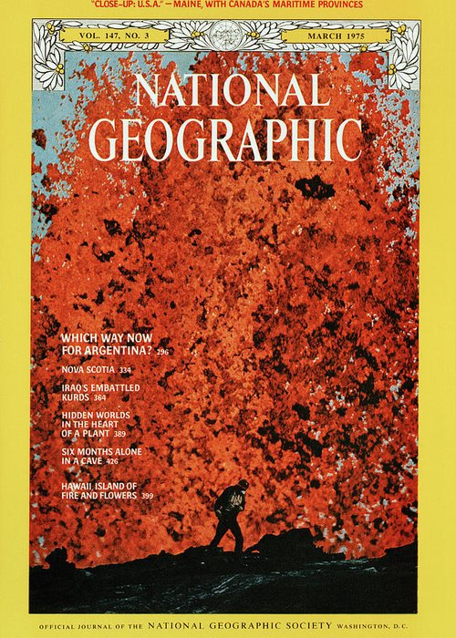 National geographic magazine cover greeting card for sale by robert national geographic greeting card featuring the photograph national geographic magazine cover by robert madden m4hsunfo